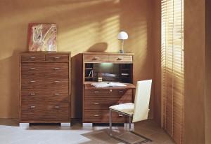 """Der Sekretär """"OST 10"""" von Schulte Design. Der kleine Sekretär im Kommoden-Format –hier Nussbaum – hat es in sich. Foto: Schulte Design GmbH"""