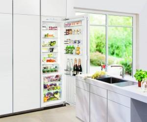 Ausgezeichnetes Gerät: Der integrierbare BioFresh Einbaukühlschrank IKBP 3550. © Liebherr