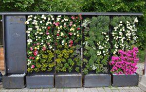 Aufgeblüht: Vertical Magic Garden sorgt für Ambiente- auch mit mobilen grünen Wänden. © Vertical Magic Garden