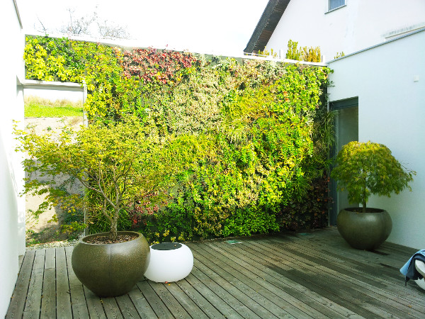 Es grünt so grün - auch im Außenbereich mit Vertical Magic Garden. © Vertical Magic Garden